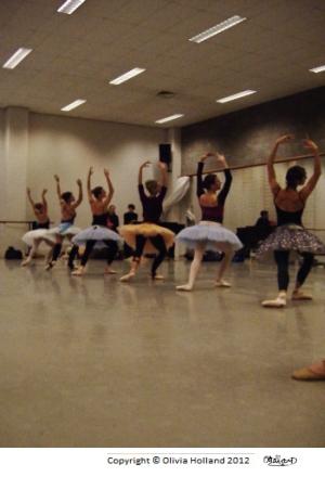 ballet-leotards